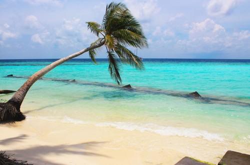 Maldives वॉलपेपर called Maafushi, Maldives
