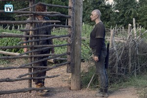 9x11 ~ Bounty ~ Daryl and Alpha