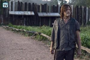 9x11 ~ Bounty ~ Daryl