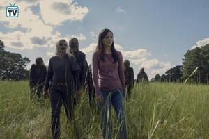 9x12 ~ Guardians ~ Lydia, Alpha and Beta