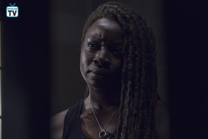 9x12 ~ Guardians ~ Michonne
