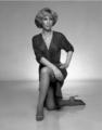 Barbara Eden - barbara-eden photo