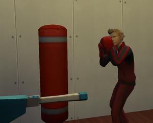 Boxing Denmark
