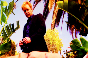 CSI: Miami ~ Prey