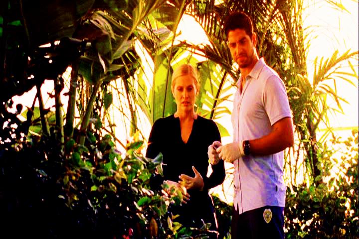 CSI: Miami ~ Prey