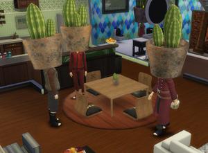 Cactus Family Gaara