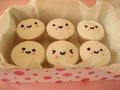 Cute Cupcakes! - cupcakes photo