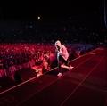 Eminem Rapture Tour - eminem photo