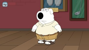 "Family Guy ~ 17x03 ""Pal Stewie"""