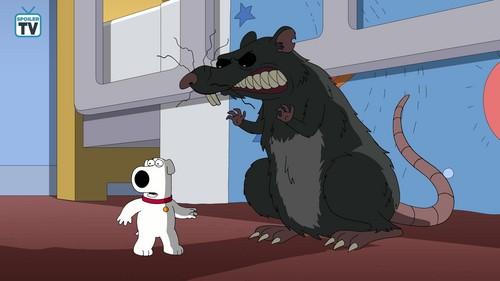 "fox Kartun kertas dinding called Family Guy ~ 17x04 ""Big Trouble in Little Quahog"""
