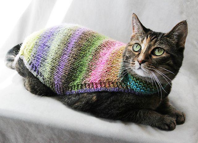 Dandy Dog Sweater: Easy Crochet Dog Sweater Pattern | 463x640