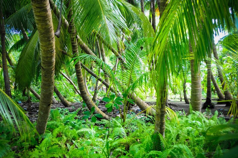 Fuvahmulah Island, Maldives