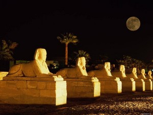 GOOD NIGHT EGYPT