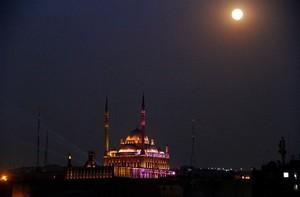 GOOD NIGHT EGYPT
