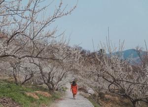 Gwangyang, Korea