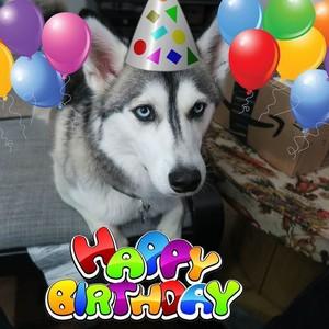 Happy Birthday Antonia 🎁🎁🎁