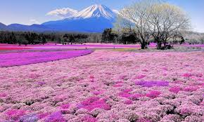 Hokkaido, জাপান
