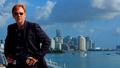 Horatio Caine - csi-miami wallpaper