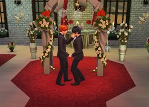 KageHina Wedding