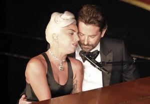 "Lady Gaga/Bradley Cooper""Shallow""🌹💖"