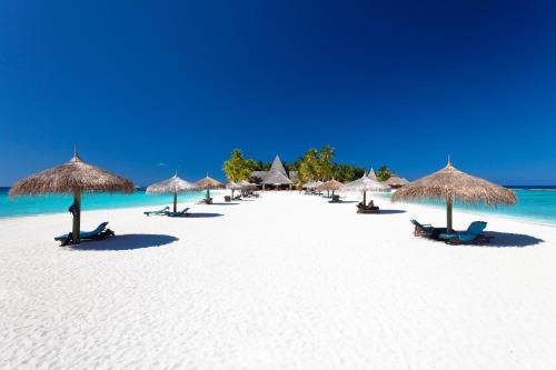 Maldives वॉलपेपर entitled Lux South Ari Atoll, Maldives