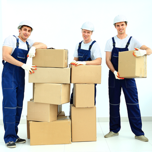 Movers and Packers in Jalandhar | 7837266600