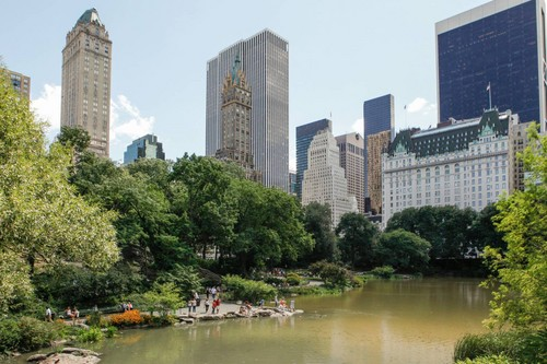 Lavendergolden Hintergrund entitled New York Central Park