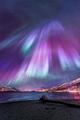Northern Lights 💖