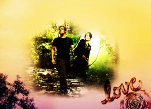 Peeta/Katniss wolpeyper