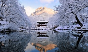 Pyeongchang County, Korea