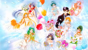 Sailor Moon - Brides