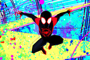 spinne Man Into the Spider-Verse