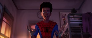 Spider Man Into the Spider-Verse