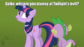 Spike Looking - my-little-pony-friendship-is-magic photo