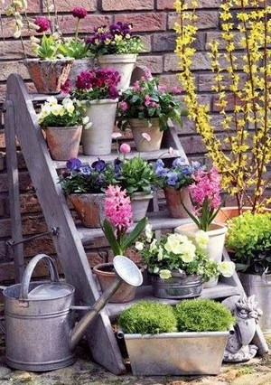 Spring feelings🌸🌷🌹