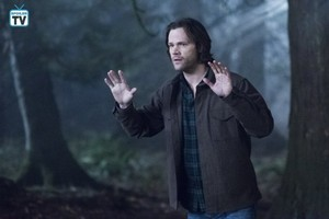 Supernatural - Episode 14.16 - Don't Go In The Woods - Promo Pics