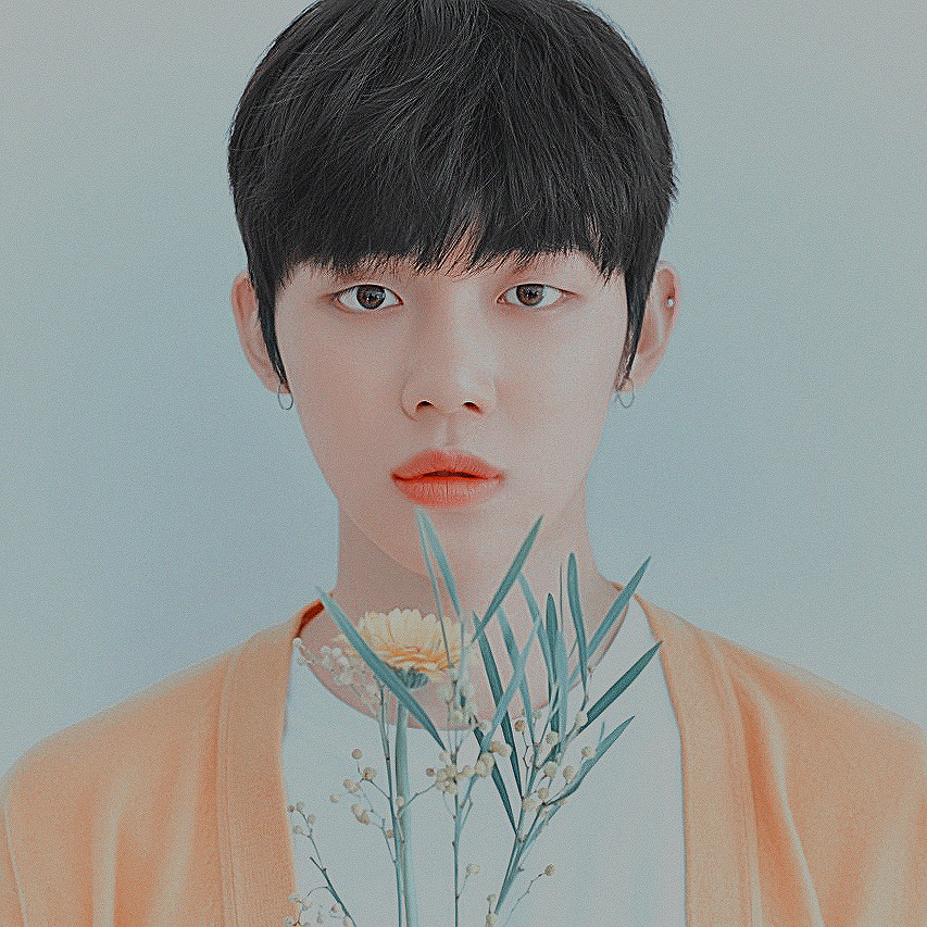 TXT images T❎T HD wallpaper and background photos (42642509)