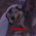 TIMMEH! - alpha-and-omega photo
