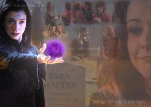 Willow/Tara hình nền - Never Again