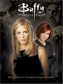 buffy - buffy-the-vampire-slayer photo