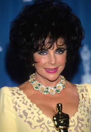 1993 Academy Awards