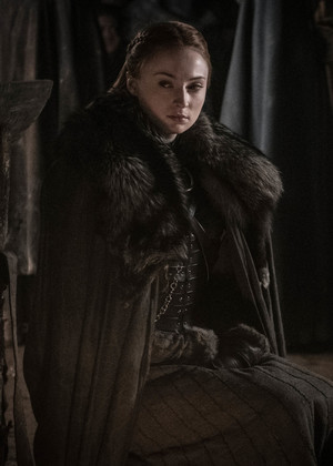 8x03 - The Long Night - Sansa