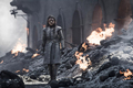 8x05 - The Bells - Arya - game-of-thrones photo