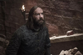 8x05 - The Bells - The Hound - game-of-thrones photo