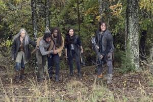 9x15 ~ The Calm Before ~ Carol, Siddiq, Michonne, Yumiko and Daryl