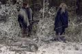 9x16 ~ The Storn ~ Daryl and Ezekiel - the-walking-dead photo