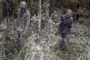 9x16 ~ The Storn ~ Walkers