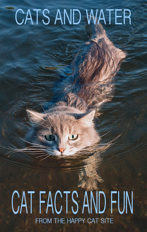 A Book Pertaining To gatos And Water