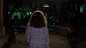 A Nightmare on Elm mitaani, mtaa 2: Freddy's Revenge