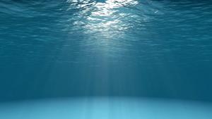 Beneath The Ocean Surface